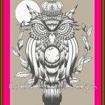 Owl King